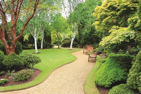 Green public park