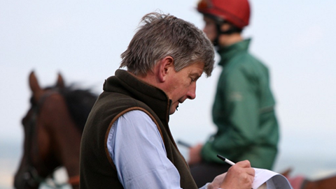 owners and trainers yard at Cheltenham